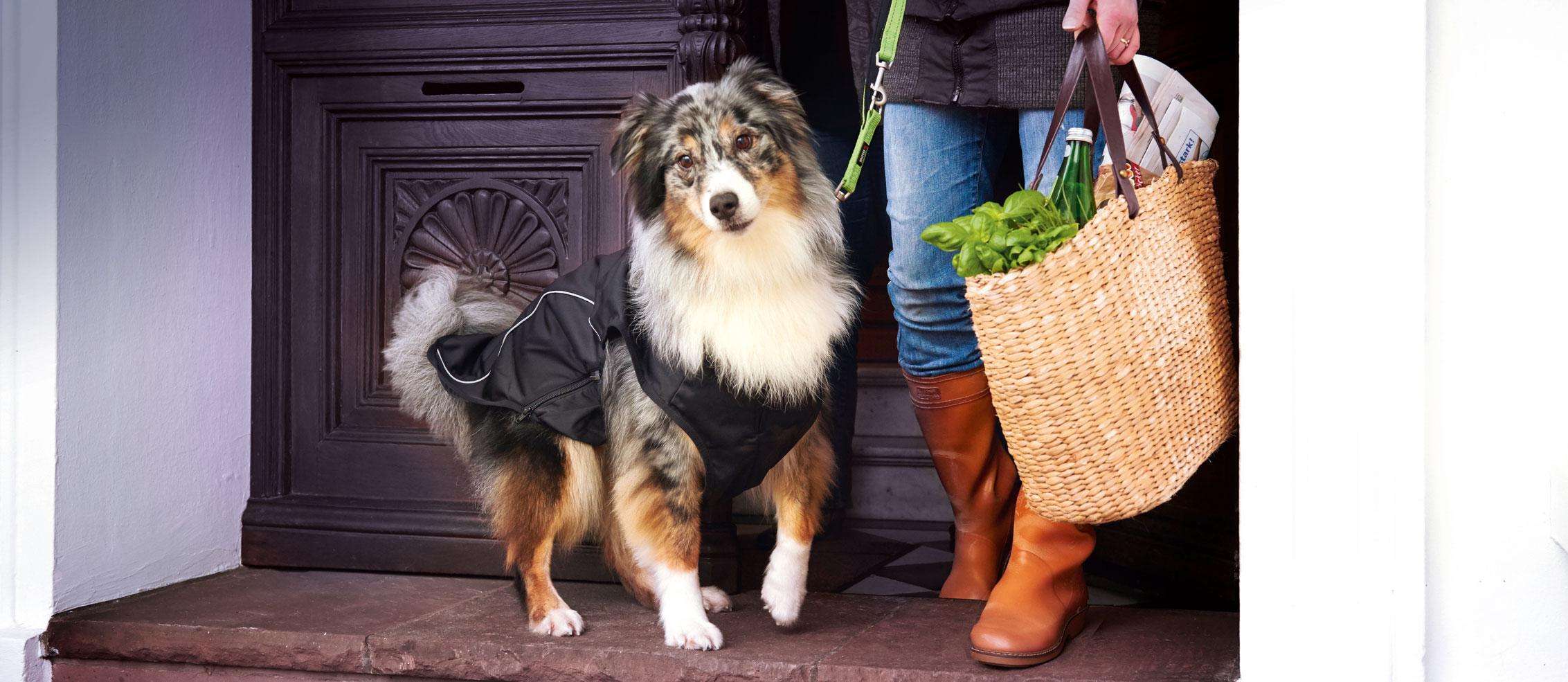 Wolters Hundemäntel Hundebekleidung Online Shop, Bild 1