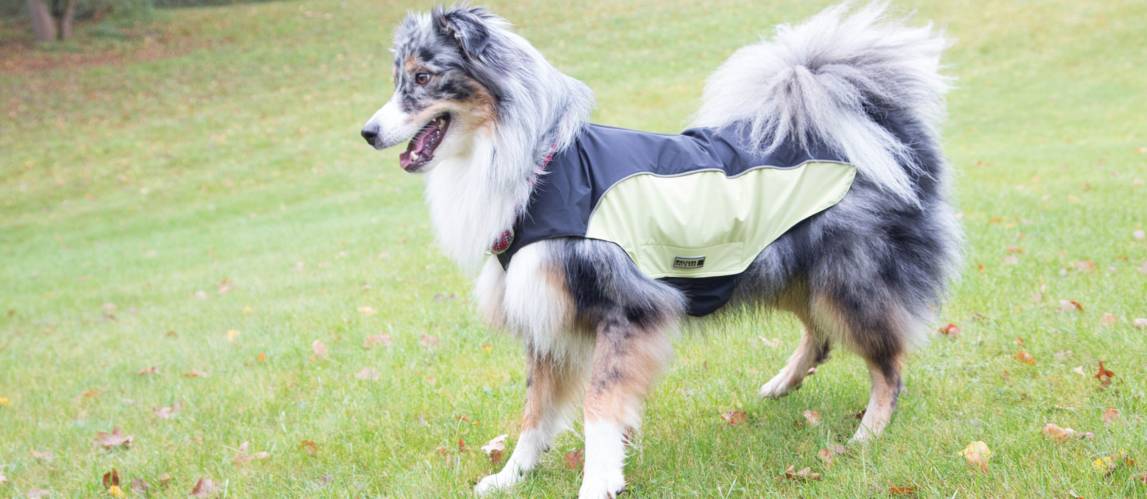 Wolters Hundemäntel Hundebekleidung Online Shop, Bild 2