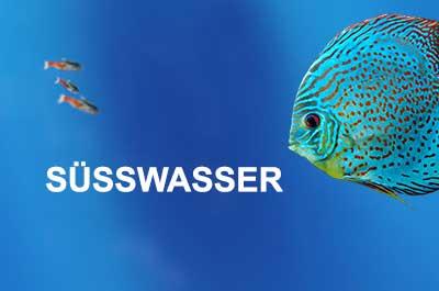 Fluval Süßwasser Aquarien und Zubehör