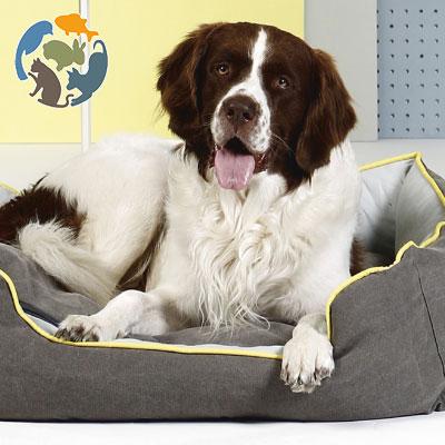 beeztees Hundebetten