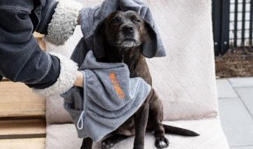 Hundepflege & Hygiene, Ungezieferschutz