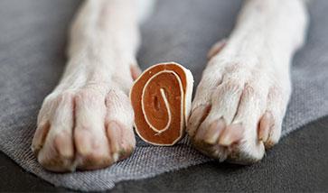 Hunde Snacks und Leckerlies