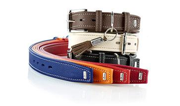 Hunter Halsbänder für Hunde