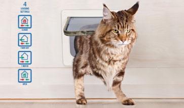 Katzentüren und Katzenklappen