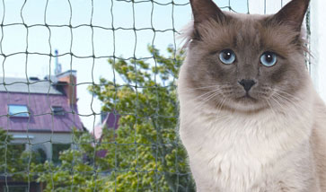 Katzennetz Schutznetze