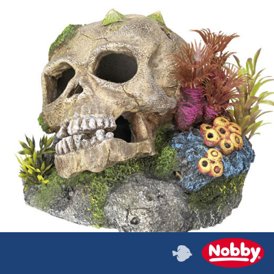 Nobby Aqua Ornaments