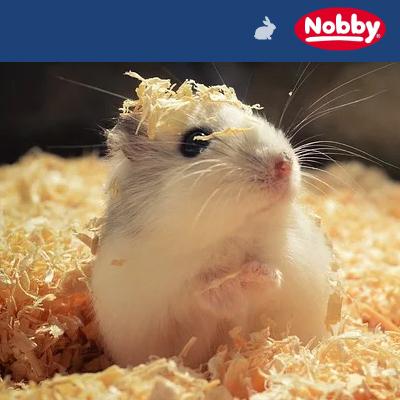 Nobby Kleintierzubehör