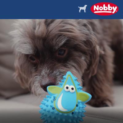 Nobby Hundespielzeug