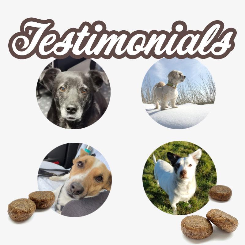 WAUSTARK Testimonials