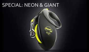flexi Spezial: Giant und Neon