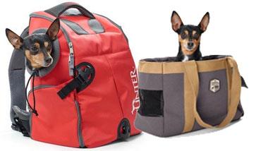Hunter Hunde Reise und Transport