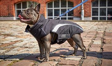 Hundemantel für Mops & Co