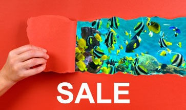 Aquarium SALE Angebote