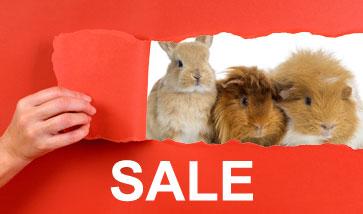Kleintierzubehör SALE Angebote