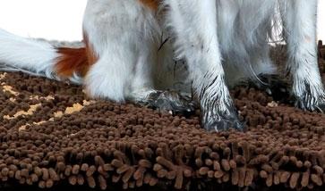 Hunde Schmutzfangmatten