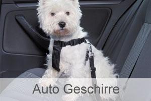 Auto Geschirre für Hunde