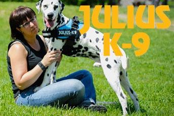 Julius K9 Hundegeschirre