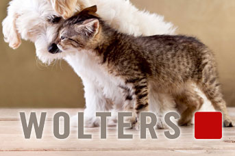 Wolters Hundegeschirre