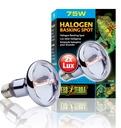 Exo Terra - Halogen Breitspektrum-Tageslichtlampe 75 W