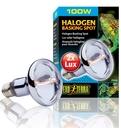 Exo Terra - Halogen Breitspektrum-Tageslichtlampe 100 W