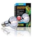 Exo Terra - Halogen Breitspektrum-Tageslichtlampe 50 W