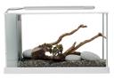 Fluval SPEC Süßwasser Aquarium Set SPEC 5 - 21,1 l weiß (51,5 x 30,5 x 19,0 cm)