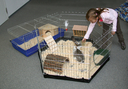 Kleintier Freigehege, verzinkt, 6 eckig mit Tür und Netz Nylonboden für 82704 (ohne Gehege)