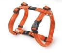 Rogz Alpinist H-Geschirr für Hunde Kilimanjaro Gr. S: Halsumfang 20 - 24 cm, Brustumfang 23 - 37 cm, orange